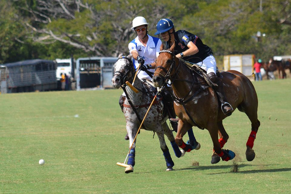 Cheshire Polo Tour
